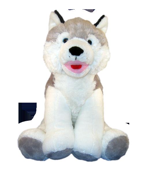 """""""Snowy"""" the Husky"""
